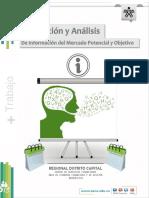 66. Recol-Análisis Info Mdo Potencial yObjetivo.pdf