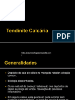 Tendinite Calcaria