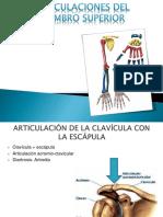 ARTICULACIONES DEL MIEMBRO SUPERIOR.pptx