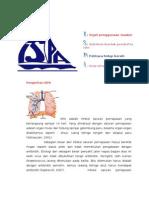 Infeksi Saluran Pernafasan Atas (ISPA)