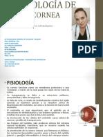 PATOLOGIA DE CORNEA