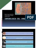 Inmunologia Del Embarazo Hidalgo Batallas Viteri