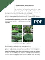 Dibalik Cantiknya Tanaman Hias Dieffenbachia.pdf