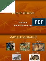 animale_salbatice (1).ppt