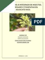 6_MIPE AGUACATE CADC final.pdf