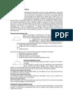 Estructura neumatica