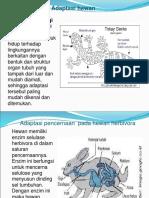adaptasi fisiologi TUGAS IPA IX F
