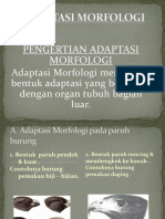 Adaptasi Morfologi 1