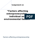Factors Affecting Entrepreneurship