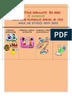 Orar terapiilor domenii CREI 2019 2020 scoate culori.doc