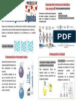 infografia - Separación por cromatografía líquida