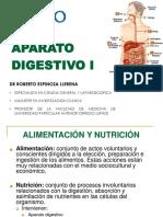anatomia-aparato digestivo-I