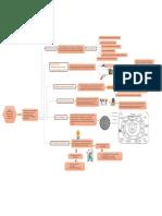 Mapa conceptual comunidad 3.pdf