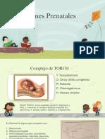 Infecciones Prenatales