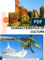 characteristis_of_culture.pdf
