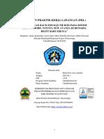 LAPORAN PKL riskidaa.docx