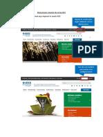 Manual para creación de correo IEEE