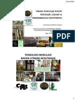 FKPWP-2013-Erdy.pdf