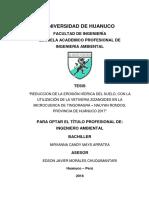MAYS ARRATEA, NIRVANNA CANDY.pdf