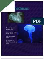 Les méduses2