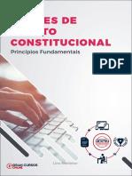 19386630-principios-fundamentais (1).pdf