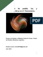 Experiencia de pedido, luz y corrimiento del yo en el  chamanismo..pdf