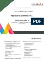Módulo III Técnico en Gastronomía (1)