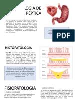 Copia de Presentación (4).pptx