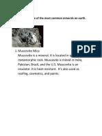 E. common minerals.docx