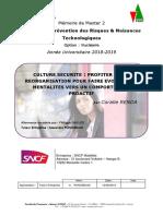RENDA Coralie. Mémoire PRNT 2019