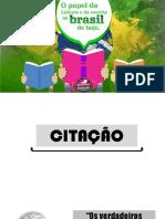 TEMA 1 - O PAPEL DA LEITURA NO BRASIL DE HOJE