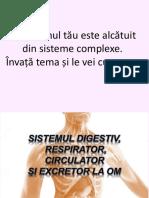 sistemul_digestiv_circulator_respirator_si_excretor