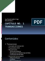 Capítulo No1_Transacciones