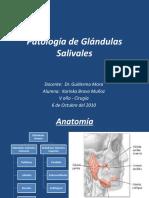 Patología de Glandulas Salivales