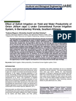 Effect of Deficit Irrigation on Yield and Water Productivity of Onion (Allium cepa l.) under Conventional Furrow Irrigation System, in Bennatsemay Woreda, Southern Ethiopia