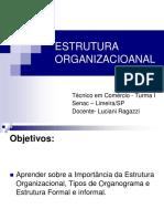 ESTRUTURA ORGANIZACIOANAL Luciani.ppt