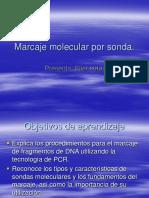 7.8 Marcaje sondas PCR