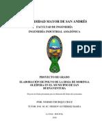 03_Planta_Polvo_Bolivia