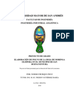 03_Planta_Polvo_Bolivia.pdf