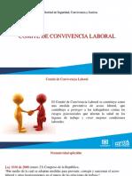 Presentación Comité de Convivencia Laboral SCJ