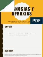 AGNOGSIAS Y APRAXIAS nelli .pptx
