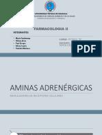 AMINAS-ADRENÉRGICAS