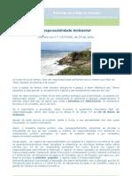 responsabilidade_ambiental