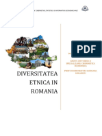 DIVERSITATEA_ETNICA_IN_ROMANIA.docx