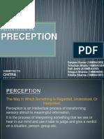 perception-181114061037.pdf