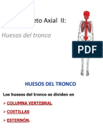 Clase Axial III. Tronco