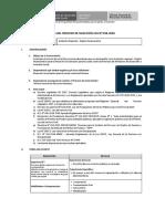 CAS 036-2020 - ASISTENTE REGIONAL - REGIÓN HUANCAVELICA.pdf