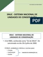 Aula 3 - SNUC - SISTEMA NACIONAL (2)