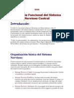Anatomía Funcional del Sistema Nervioso Central.docx