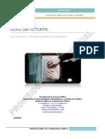 CDG_GUIA_LICITANTES.pdf
